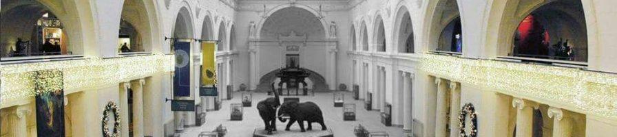 Kenali Lanskap Museum Irlandia Pada Asosiasi Museum Irlandia